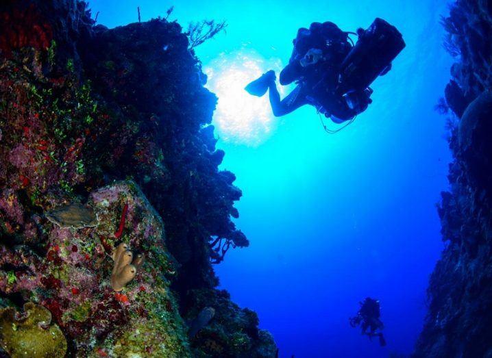 A diver descends