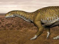 Fossil of 10-tonne Triassic dinosaur discovered in Argentina