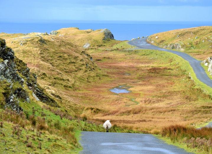 Slieve Leage landscape, Donegal, Ireland. Image: travelamos/Shutterstock