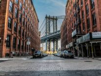 New York invests $25m in SOSV's IndieBio to fuel life sciences ambitions