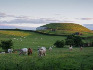 Newgrange monument and surrounding fields