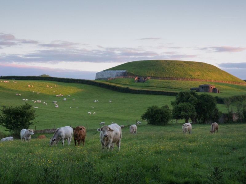 Newgrange monument and surrounding fields