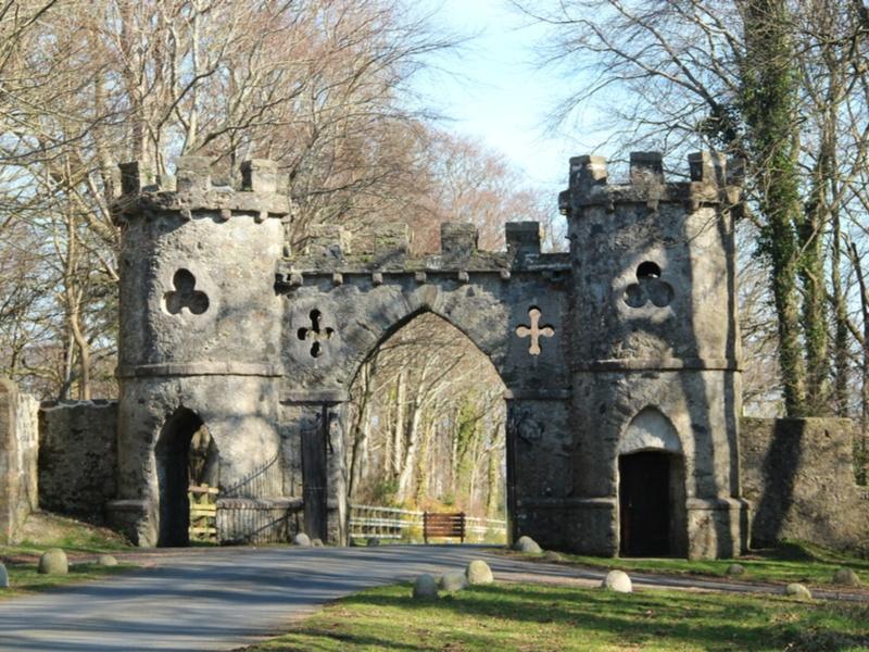 New maps of Ireland reveal secrets of Medieval wealth across island