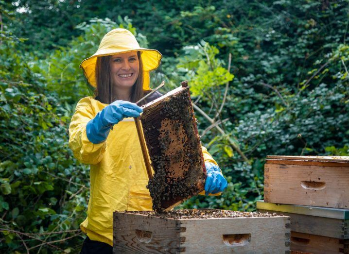 A woman in a bright yellow beekeeping suit and blue gloves holds up a honeycomb frame from a hive covered in bees.