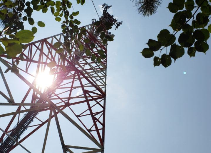 A telecoms tower pictured through trees.