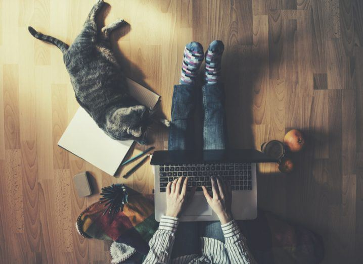 An aerial view of someone resting their laptop on their legs with their pet cat lying on some documents on the floor.