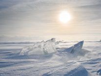 Researchers release audio of Antarctic ice 'singing' a haunting song