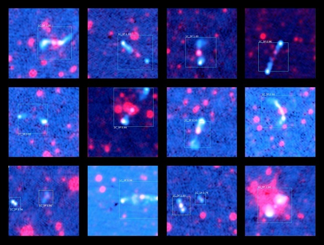 14 blue panels showing predicted radio galaxies in pink.