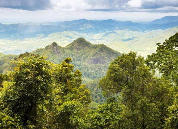Expansive vista of green rainforest with hills and mountains.