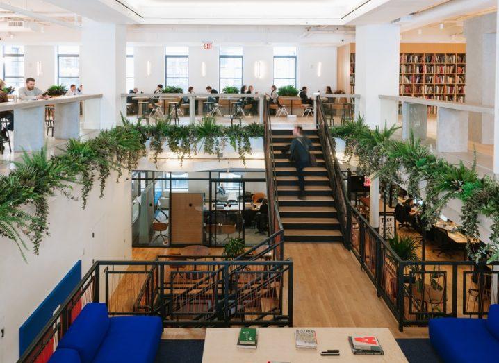 WeWork office in New York, featuring desks and indoor plants.