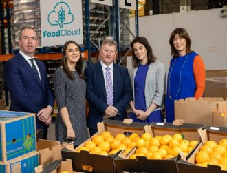 FoodCloud aims to double impact over three years following funding injection