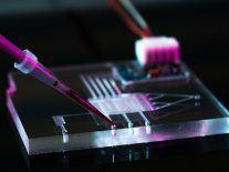 Nano AI revolution: Smartphones push chip design envelope to 7nm
