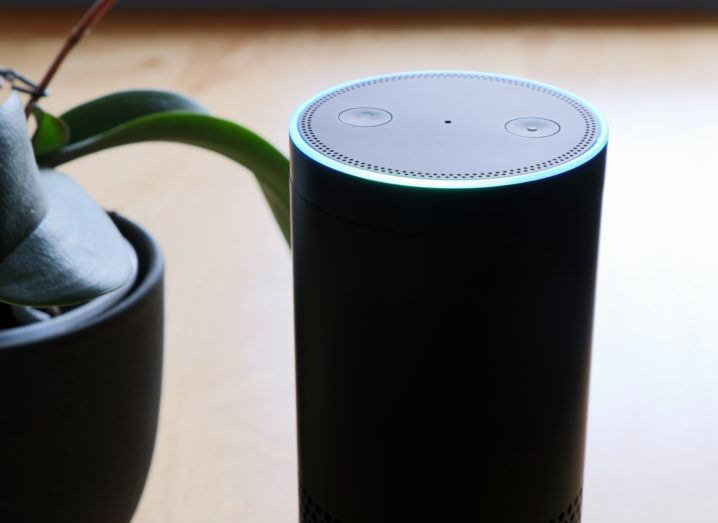 Amazon's Echo device, which houses the Alexa voice assistant, on a wooden table beside a potted plant.