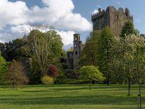 Cork jobs boost as ILC Dover and Clonakilty Distillery create 100 jobs