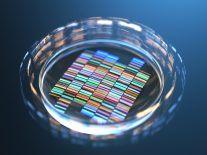 Irish scientists use CRISPR to unlock potential soft tissue cancer treatment