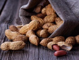 Many children can tolerate peanuts using new allergy treatment
