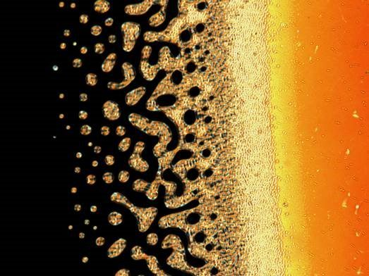 The black, yellow and orange colours of a liquid crystal cell appearing like a seashore.
