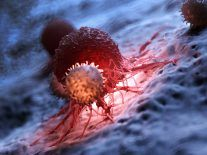 Scientists find way to tweak 'happiness hormone' to control cancer immunity