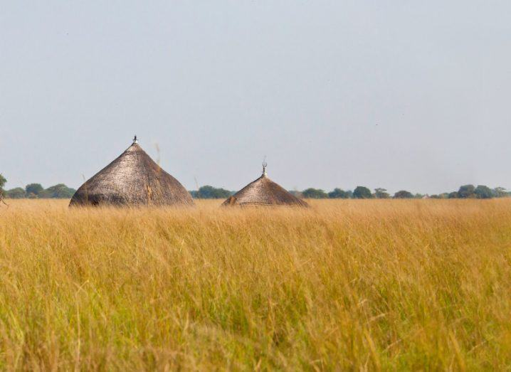 Grassland and traditional huts in south sudan.