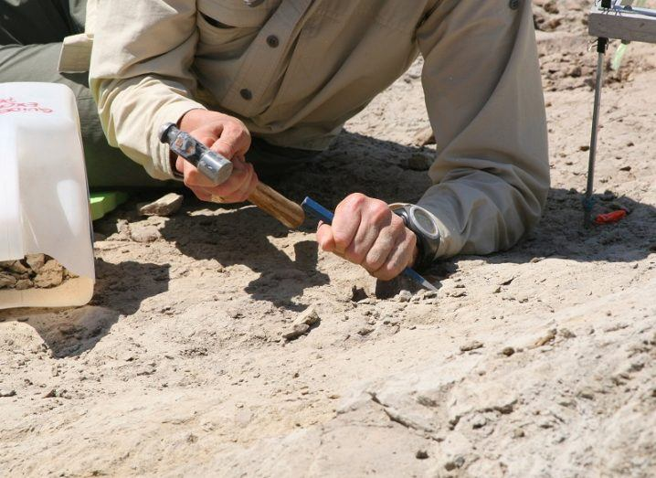 chisel being used in ground during archaeological dig.