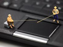 Shocking number of Irish office workers fall victim to phishing scams