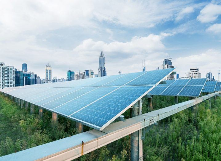 Solar panels above greenery with a cityscape in the background.