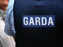 Report says Garda cybercrime strategy in need of major update