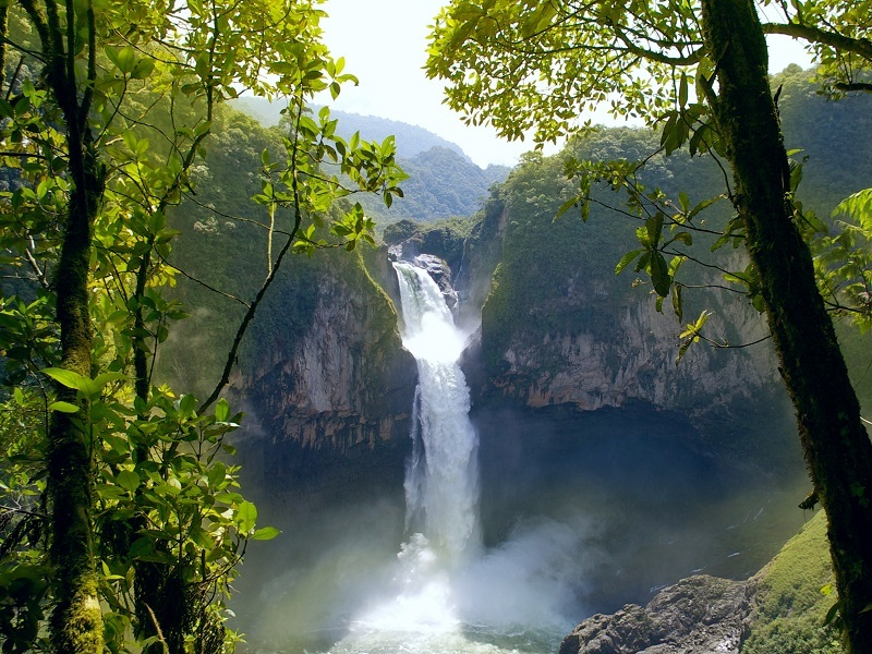 Distant shot from a grouping of trees of the San Rafael Falls, the largest waterfall in Ecuador.