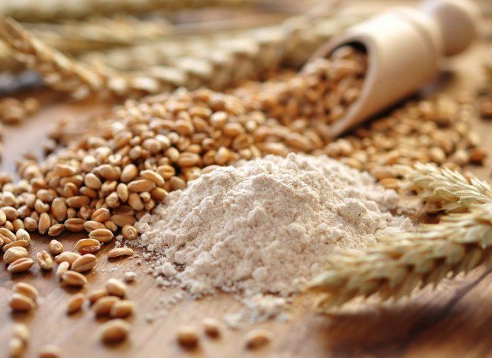 High Intake of Dietary Fiber and Whole Grains Reduce Risk of Disease