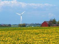 NTR to spend €180m on wind farms in Sweden and Finland