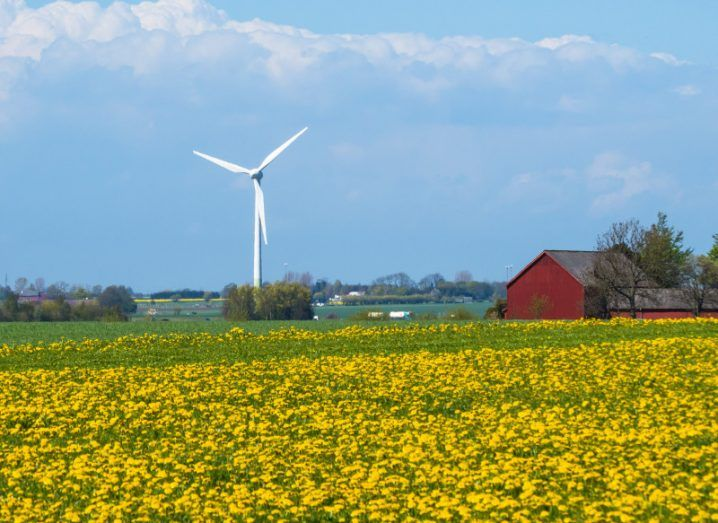 A wind generator on the blossoming fields in south Sweden.