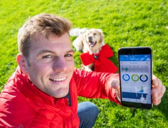 Devices for dogs: Vodafone Ireland launches pet tracker