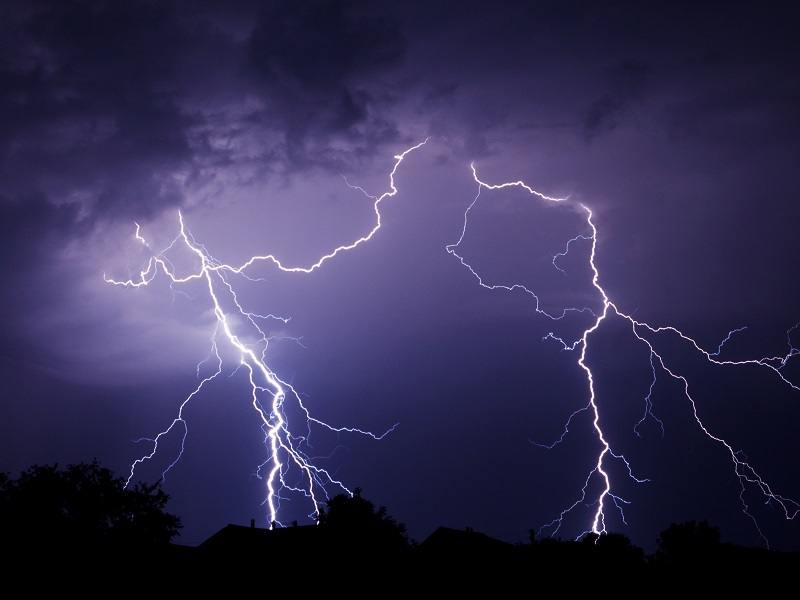 Lightning strikes may be doing something really weird to living cells