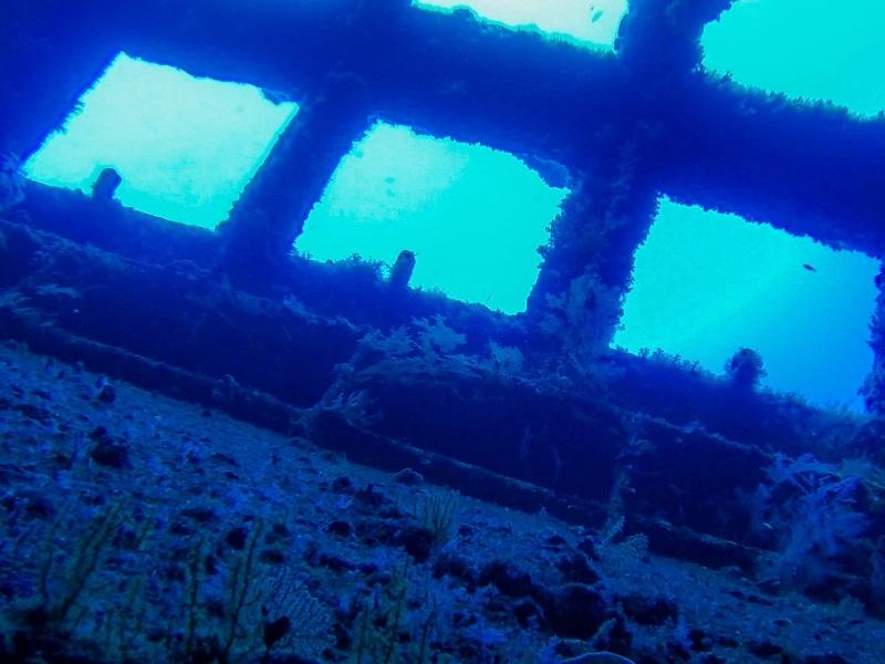 Wreckage of World War I U-boat among big finds by Irish submarine team