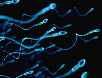 Why 'old' sperm might be the answer to having healthier offspring