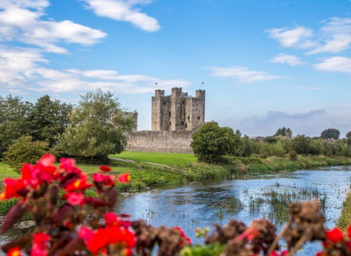 A picture of the Norman Castle in Trim under a blue sky alongside a river with red flowers in the foreground.