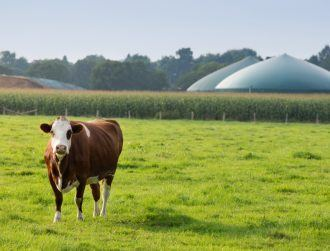 How can we turn agricultural waste into an energy source?