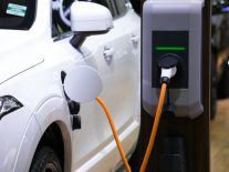 Amnesty calls on EV makers to come clean on batteries