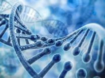 Scientists celebrate first billion-atom simulation of entire DNA gene