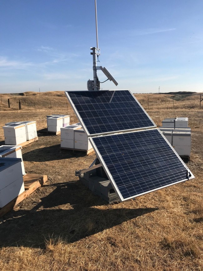 satellite and solar equipment alongside a bee farm.