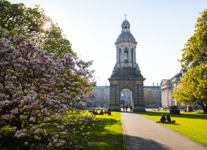 A beautiful summery view of the campus at Trinity College Dublin with trees in full bloom.