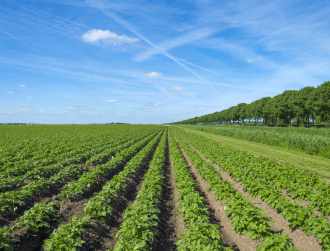 Belgian agritech firm AgroSavfe closes €35m in Series C