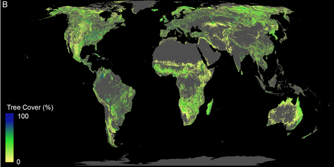 False-colour map of Earth showing where trees could be planted.