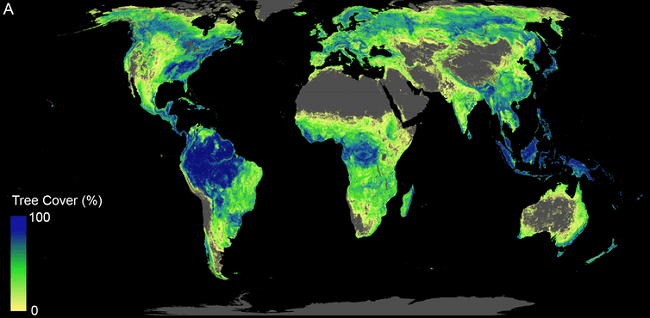 A false-colour map of Earth showing a significant increase in tree coverage after reforestation.