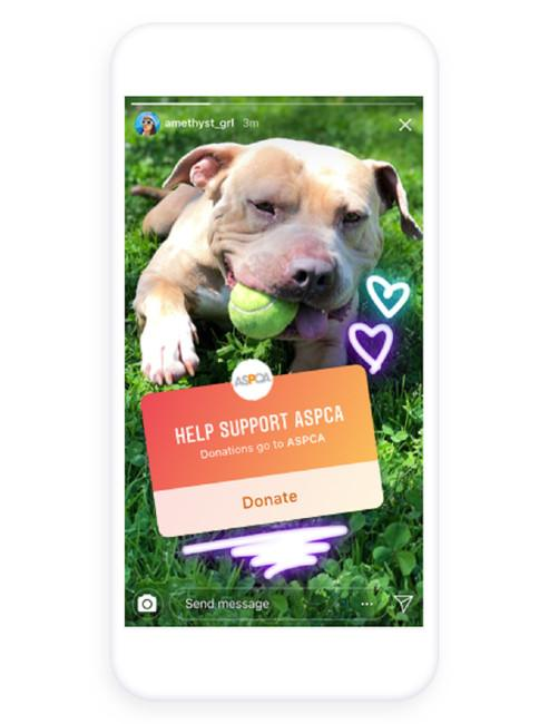 A phone screen mock-up showing a photo of a dog in an Instagram story, with a sticker from the ASPCA for donations.
