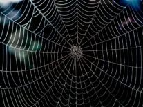 Deciphering the dark web: What it is and why it's not so scary