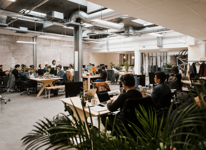 Dozens of employees sit in an open plan office in front of some plants. There is an exposed brick wall, and an open ceiling with visible ventilation ducts.