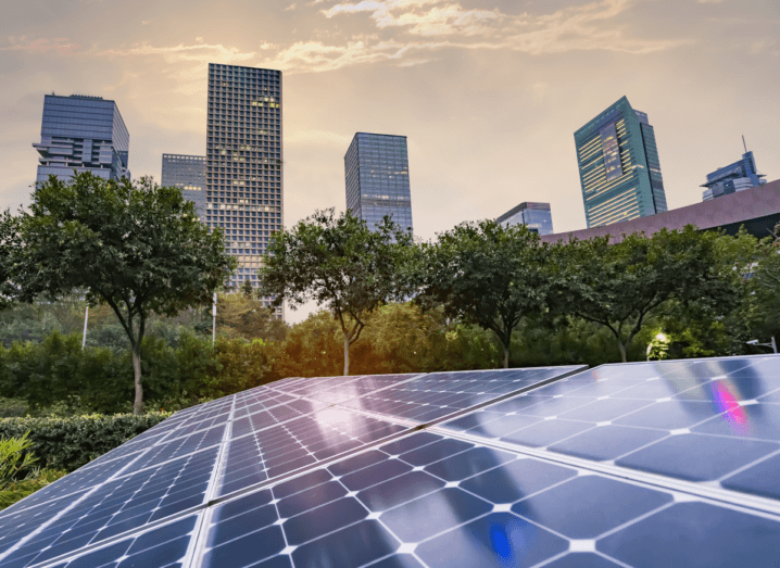 Solar panels among bushes, shrubbery and trees below a number of skyscrapers. The sky above the scene is slightly cloudy.