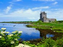 Galway-based investigative intelligence firm Siren raises $10m