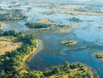 Is Botswana really humanity's ancestral home? Actually, it's complicated